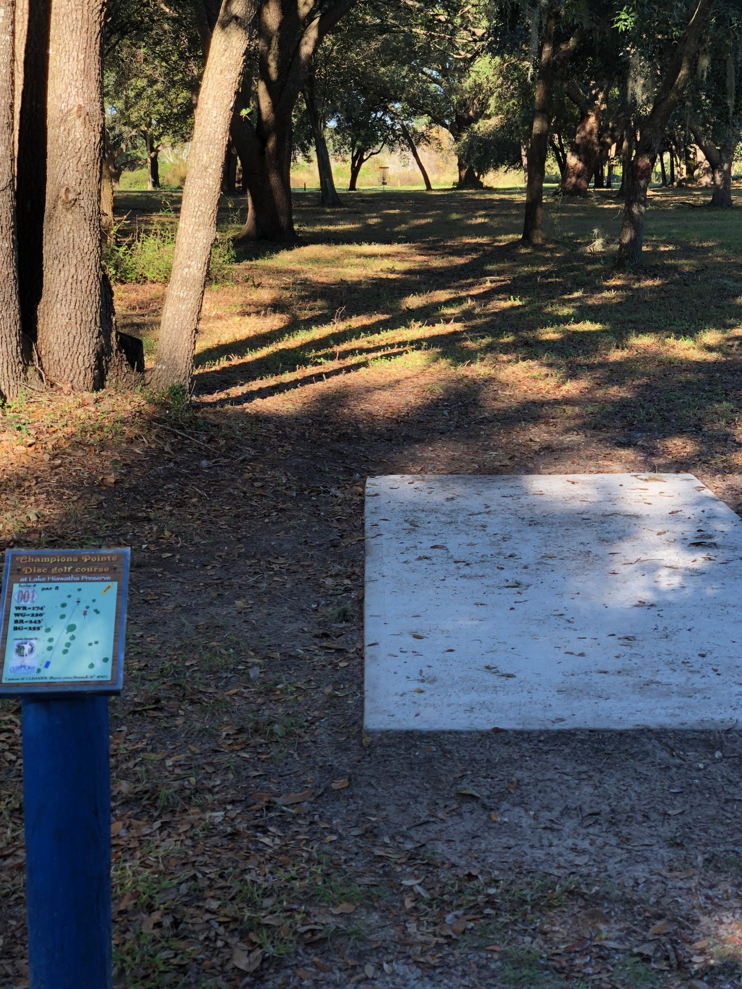One of the stops on Clermont's disc golf course